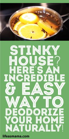 Here's A Simple Method To Naturally Deodorize Your Home! Household hacks for a stinky home. DIY natural air fresheners that will leave your home smelling great and feeling clean. Household Cleaning Tips, House Cleaning Tips, Cleaning Hacks, Deep Cleaning, Green Cleaning Recipes, House Smell Good, House Smells, Skunk Smell In House, Potpourri Recipes