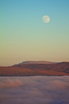 Desert Moon #nature