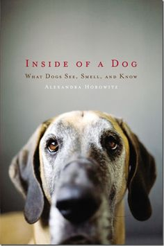 Such a good book about the inner workings of dogs.
