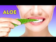 SKINCARE BENEFITS OF ALOE VERA Aloe Vera is an incredible succulent that has been incredibly popular since ancient times. Natural Face Wash, Natural Lips, Gel Aloe, Aloe Vera Gel, Makeup Yourself, Tricks, Youtube, The Cure, Natural Beauty Tips