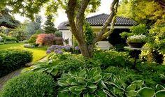 Galleria - Ogrody Dawid, projektowanie ogrodów, zarządzanie zielenią, profesjonalne ogrody, piękne ogrody, profesjonalny ogród, piękny ogród, architektura krajobrazu, aranżacje ogrodów, pielęgnowanie ogrodów, zakładanie ogrodów, Wrocław, Kobierzyce, Tyniec Mały, okolice, pomysły na ogród, porady architekta krajobrazu, zagospodarowanie zieleni
