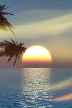 There's nothing more beautiful than watching a sunset over the ocean! Except maybe watching a sunrise over the ocean! Pretty Pictures, Cool Photos, Beautiful World, Beautiful Places, Beautiful Scenery, Stunning View, Beautiful Moments, Beautiful Sunrise, Beautiful Moon
