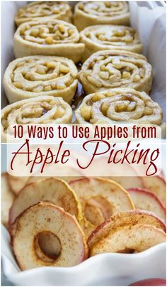 It's time for apple picking! It's easy to get carried away and before you know it you have more apples than you know what to do with. No worries then, because here is a list of recipes to put those fresh yummy apples to great use. Best Apple Crisp Recipe, Apple Recipes Easy, Healthy Dessert Recipes, Fruit Recipes, Fall Recipes, Gourmet Recipes, Cooking Recipes, Apple Recipes Dinner, Apple Recipes With Fresh Apples