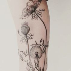 I love this style. It never seems to loose its appeal. Please tag if you keyholes work this is. #tattoooftheday#picoftheday#legwork #blackwork#linework#dotwork#ink #naturetattoo#dandeliontattoo#dandelion #poppy #poppytattoo#queenanneslace #flowertattoo#blackworkers#loveit #epicart#organictattoo#sleeve#ss15