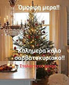 Avon, Good Morning, Christmas Tree, Holiday Decor, Photos, Buen Dia, Teal Christmas Tree, Pictures, Bonjour