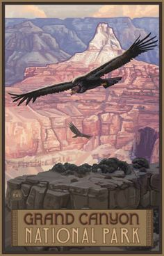 Grand Canyon Condor Pal 1049 Fine Art Giclee Photographic Print at Artist Rising. Artist Rising is the premier destination for discovering original art, fine art and photography prints, and limited edition art by living artists. National Park Posters, Us National Parks, Voyage Usa, Pin Up, Grand Canyon National Park, Grand National, Vintage Travel Posters, Vintage Ads, Best Photographers