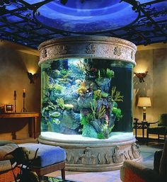 I love the fish tank, and the look of this entire room!