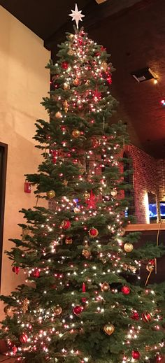 Christmas tree in restaurant
