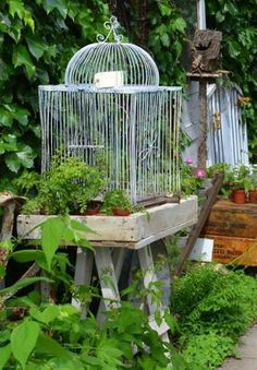 Wood Wire Cage Gardens The two and Repurposed