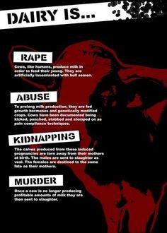Dairy is rape