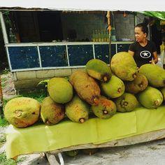 フィリピンセブの路上で見かけたジャックフルーツ売り インドネシアやマレーシアでもよく売られてたどころかそこらの木に成ってたけどすごく大きいです こんなデカイのは見かけなかったような 調べたらジャックフルーツは世界最大のフルーツなんだってさ 詰まるところ成長しきる前にあれは収穫されてたのかな それともフィリピンの気候がジャックフルーツに合ってるとか もしかしてそもそもジャックフルーツじゃなかったわけではあるまいな2018年6月  Bloghttps://dtman.info  #サイクリング #自転車 #自転車のある風景 #自転車生活 #チャリダー #チャリライダー #自転車乗り #自転車生活 #自転車のある生活 #旅 #旅行 #海外 #一人旅 #景色 #海外旅行 #旅人 #海外一人旅  #思い出 #楽しかった #写真 #カメラ #撮影 #一眼レフ #フォト #写真撮ってる人と繋がりたい #写真好きな人と繋がりたい #ファインダー越しの私の世界 #インスタ #フォローミー #フォロー