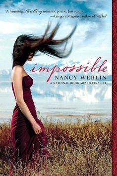 Impossible- really enjoyed this book. very modern day fairy tale type of book