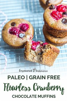 Need a delicious Paleo breakfast or dessert recipe? Try these Flourless Cranberry Chocolate Muffins! #paleobreakfast #paleodessert #paleodiet #paleorecipe Zucchini Muffins, Muffins Blueberry, Almond Muffins, Healthy Muffins, Healthy Snacks, Paleo Muffin Recipes, Snack Recipes, Dessert Recipes, Free Recipes