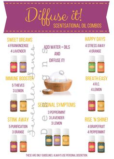 DIGITIAL DOWNLOAD| Essential Oil Diffuser Recipe Guide | Young Living Essential Oils