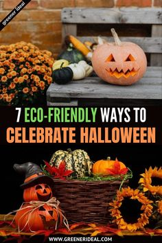 Halloween is almost here, and that means a thrilling holiday filled with great food and wild celebration, too much candy and impressive Jack-O-Lanterns. This year it will be diffrent, But Check out these 7 Eco-Friendly Ways to Celebrate Halloween This Year! #Halloween #Treat #Trick #TrickorTreat #Ecofriendly #GreenLivingTips #GoGreen #Candy #Holyday #Sustainable #Fall #Pumpkin #holiday #FallPumpkin #Celebration