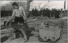 1939 Prinses Juliana probeert de hond in beweging te krijgen.