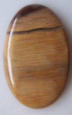 Beautiful petrified wood cabochon 6519 by Eaglegems on Etsy