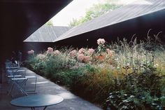 "architectureandfilmblog:  ""Serpentine Pavilion, Peter Zumthor and Piet Oudolf, 2011  SERPENTINE GALLERY PAVILION (2011)  This collaboration, which was Zumthor's first built project in the UK, provided a temporary reflection space, in the form of a..."