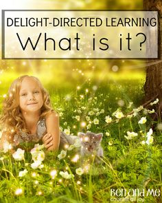 What Is Delight-dire