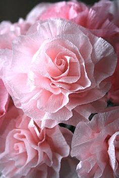 Pretty Crepe paper flowers | The Crafty Power Blog