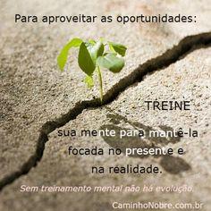 Para aproveitar as oportunidades: Treine sua mente para mantê-la focada no presente e na realidade. Sem treinamento mental não há evolução. Regis Mesquita Caminho Nobre http://caminhonobre.com.br/2011/07/24/mentalizacao-otima-opcao-para-descansar-a-mente-e-sair-do-negativismo/ #treinamento #mente #oportunidade