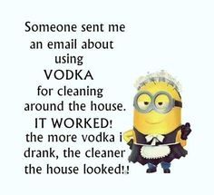 Someone sent me an email about using VODKA for cleaning around the house.  IT WORKED!  The more vodka I drank, the cleaner the house looked!! - minion