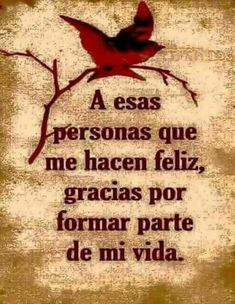 Cute Spanish Quotes, Spanish Inspirational Quotes, Spiritual Quotes, Wisdom Quotes, Life Quotes, Thank You Quotes, Love Me Quotes, Good Morning Messages, Morning Quotes