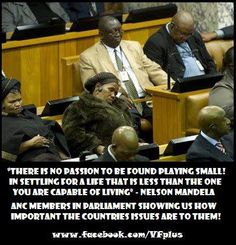 Cape Town, South Africa: Black ANC Councillors Trash City Hall, Dance with Mock South African News, I Am An African, People Sleeping, New Africa, Cape Town South Africa, Zulu, Vintage Photos, Funny Pictures, Funny Pics