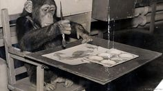 Can animals be creative? A few are prodigious producers of 'art', as Jason G Goldman discovers. Is it any good?