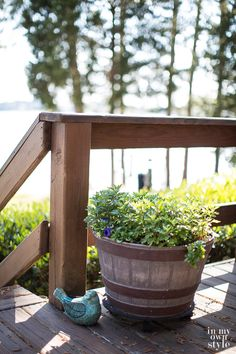 Just like interior decorating needs a color scheme to look cohesive, outdoor decorating needs a color scheme, too. Check out these simple and affordable outdoor decor ideas on how to decorate your deck, patio and yard in affordable style.