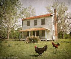 This sweet old farmhouse looks long forgotten . but the chickens seem to still like pecking around the farm . Country Farmhouse, Country Life, Country Living, Country Roads, Country Charm, Rustic Charm, Southern Living, Old Farm Houses, Tiny Houses