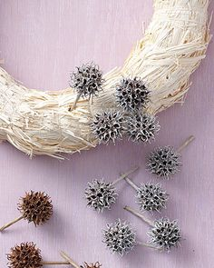 Sweet gum Wreath!  I made earrings out of these once!