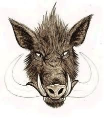 wild boar - Google Search http://riflescopescenter.com/category/hawke-riflescope-reviews/