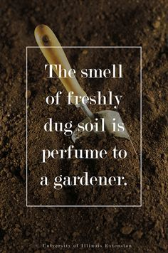 The smell of freshly dug soil is perfume to a gardener. #quote #gardening