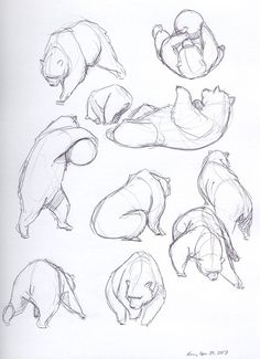 More bear sketches. Medium: ball-point pen © 2007 Kelvin Sue All Rights Reserved.