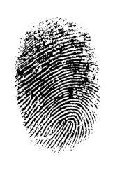Science Fair: Are Fingerprint Shapes Inherited?