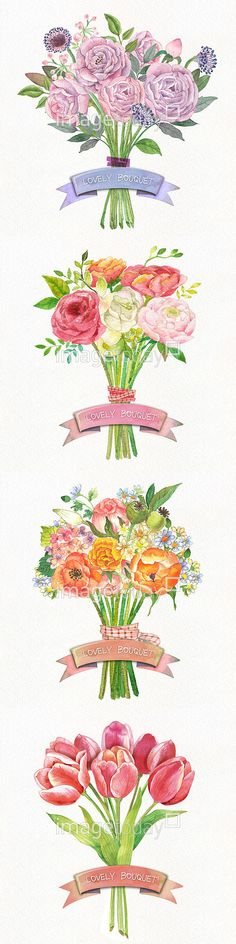 Pen And Watercolor, Watercolor Illustration, Watercolor Flowers, Watercolor Paintings, Tole Painting, Colorful Drawings, Flower Tattoos, Vector Art, Floral