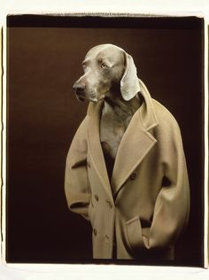 What Becomes a Legend Most? Max Mara Reissues the Iconic 101801 Coat