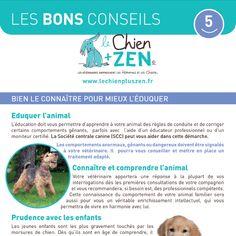 Fiche les bons Conseils Chien + ZEN : bien le connaitre pour mieux l'éduquer Education Canine, Chihuahua, Maya, Zen, Marketing, My Love, Dogs, Animals, Happy Dogs