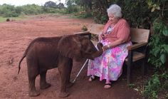 Meet the Amazing 81-Year-Old Conservationist Who's Saving Africa's Last Elephants: Dame Daphne Sheldrick