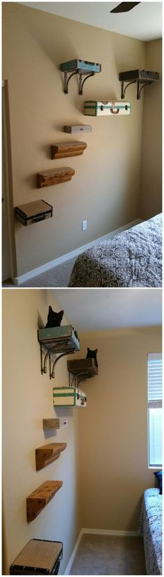 Catification Wall Suitcase Beds Shelves Stairs Cat Tree – Tap the link now to se… Catification Wall Suitcase Betten Regale Treppen Kratzbaum – Tippen Sie [. Bed Shelves, Cat Wall Shelves, Cat Climbing Shelves, Cat Climbing Wall, Le Living, Diy Cat Tree, Cat Perch, Animal Room, Cat Playground