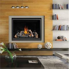1000 images about eco friendly environments on pinterest for Eco friendly fireplace