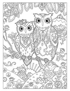 Creative Haven Owls Colouring Book by Marjorie Sarnat ~ Storybook