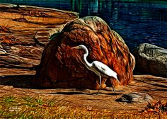 ACEO Egret art print - 3671 - Egret Art - Water Birt Art - Animal Art - James Ahn