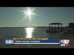 ▶ Florida reminds of dangers of 'brain-eating amoeba,' Naegleria Fowleri - YouTube