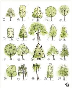 45 Super Ideas For Tree Drawing Sketches Landscapes Landscape Sketch, Landscape Design Plans, Landscape Architecture Design, Architecture Graphics, Landscape Drawings, House Landscape, Architecture Apps, Architecture Portfolio, Tree Sketches