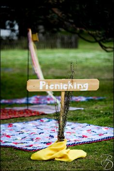 #picnic wedding with #personalized #signs Photo by Bray Danielle Photography