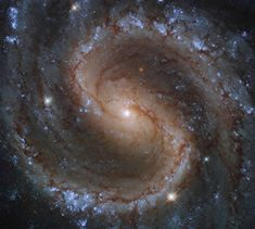 Hubble Takes Portrait of the 'Lost Galaxy' | NASA Telescope Images, Hubble Space Telescope, Nasa Hubble Images, Cosmos, Virgo Constellation, Star Formation, Light Year, Image Of The Day, Stunning View