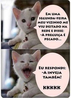 New funny humor memes sisters ideas Gato Do Face, Cat Memes, Dankest Memes, Video Humour, Good Humor, Try Not To Laugh, Funny Moments, Funny Photos, I Laughed