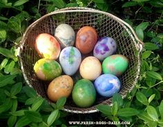 Fresh Eggs Daily®: Martha's Marbled Easter EggMarbled Easter Eggs